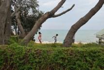 Dromana Beach, Mornington, Victoria Australia